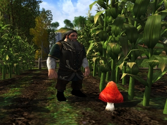 mushroom-hunt_large
